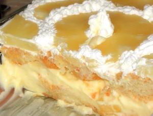 bolo di frigidaire frishider icebox cake bolo di pudding antilliaanse taart recept
