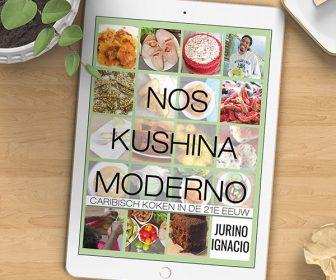 noskushinamodernoebook